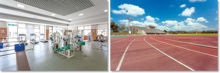 体育館&陸上競技場 Gymnasium&Athletic Field